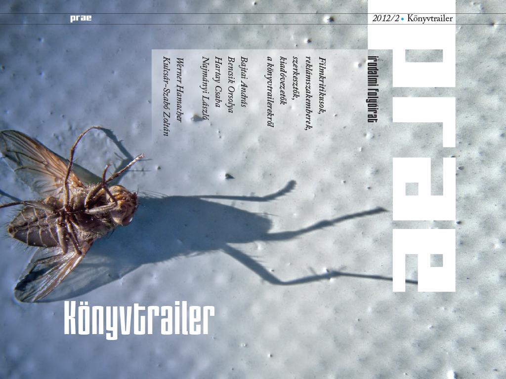 irodalmi folyóirat borító légy belecsápol design